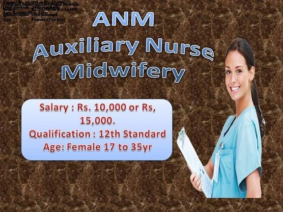 ANM Salary